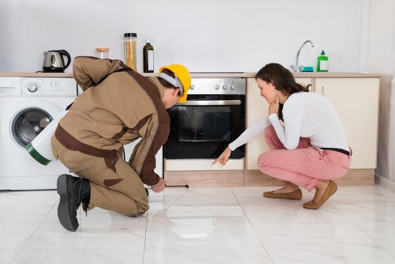 20160531081530-pest-control-professional-spraying-inside-homejpg