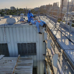 Asbestos Removal Tips For House Owners In Alexandria