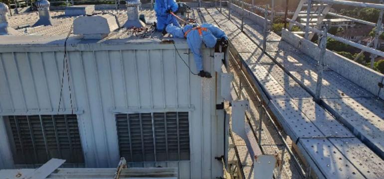 asbestos removal Alexandria